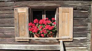 Osmanli adetleri ğencereye kırmızı çiçek